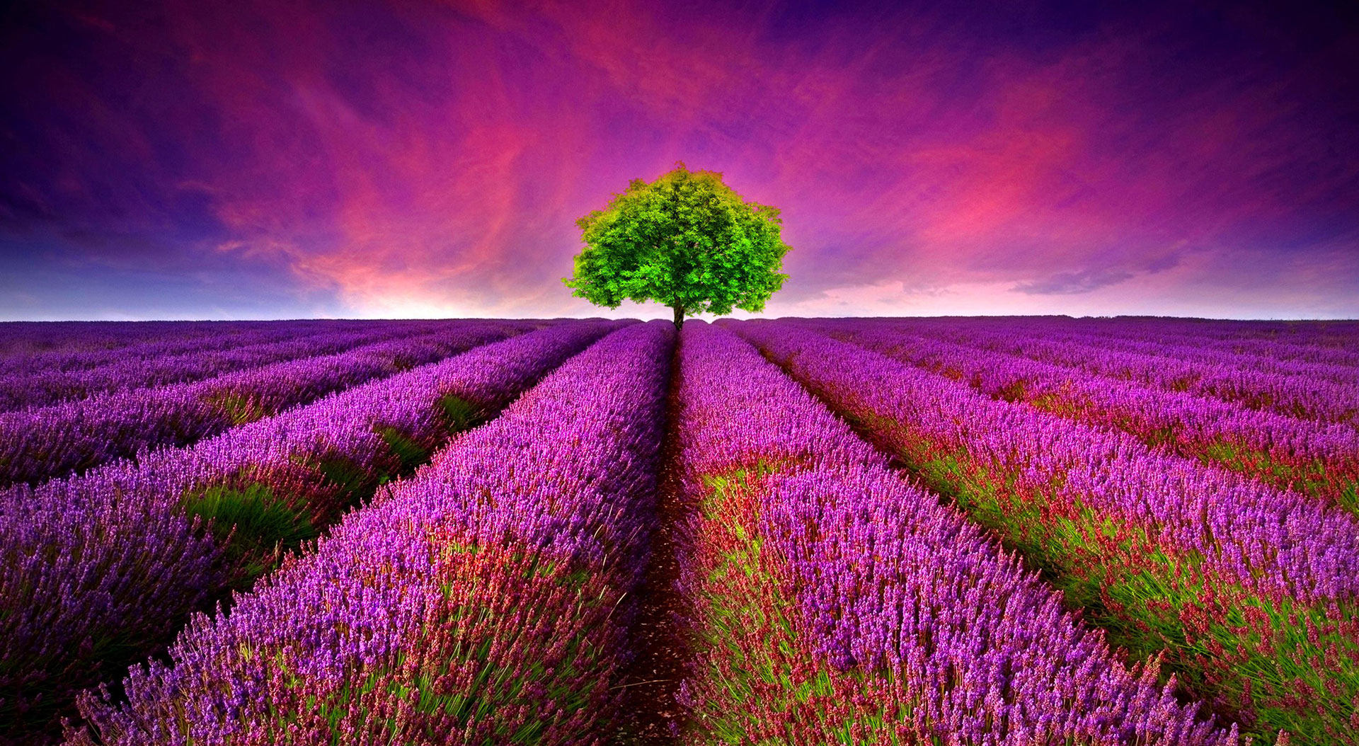Free Beautiful Wallpapers For Laptop