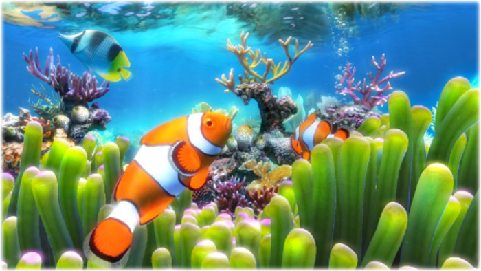 Free Download Aquarium Live Wallpaper For Pc