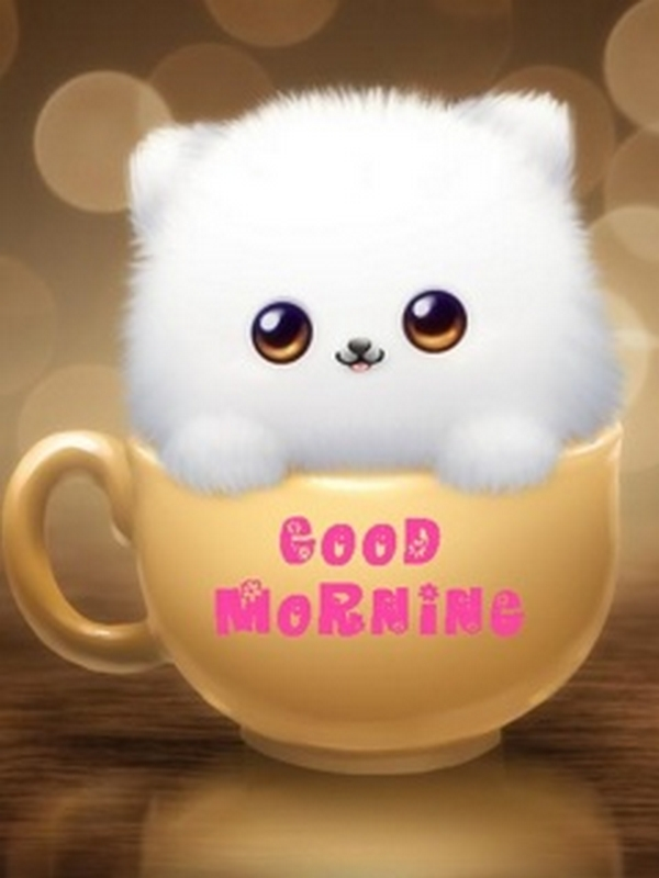 Free Download Good Morning Wallpaper For Mobile