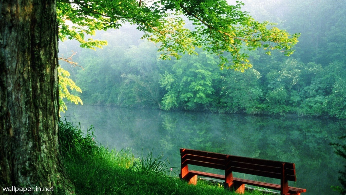 Free Download Nature HD Wallpapers