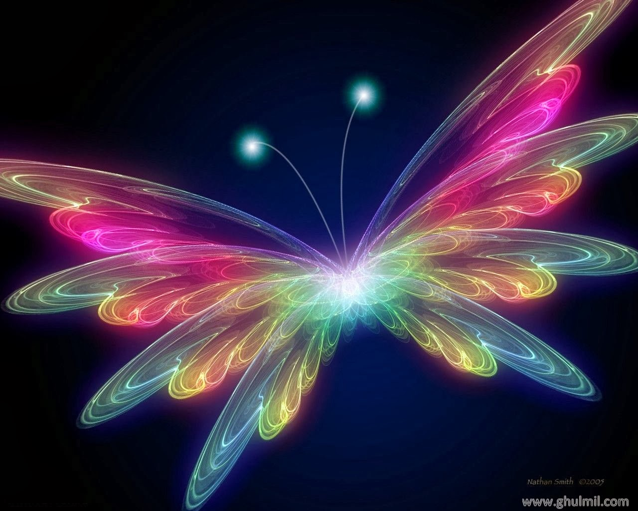 Free Live Butterfly Wallpaper