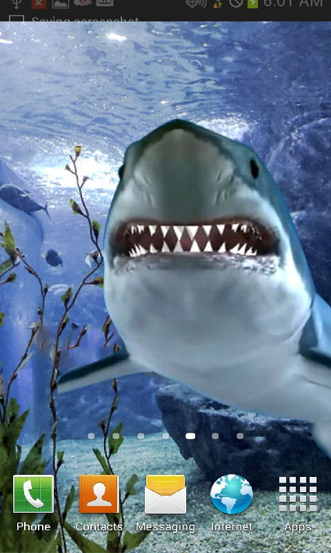 Free Live Shark Wallpaper