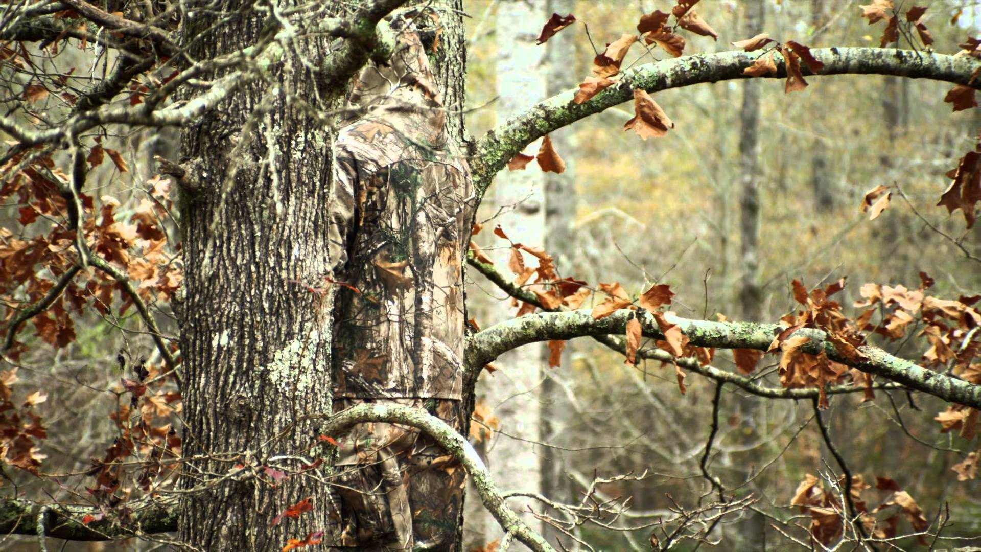 Free Realtree Camo Wallpapers