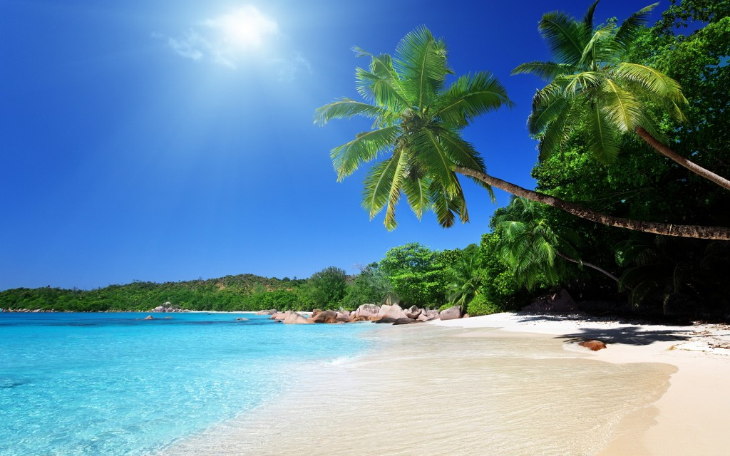 Free Tropical Screensavers And Wallpaper