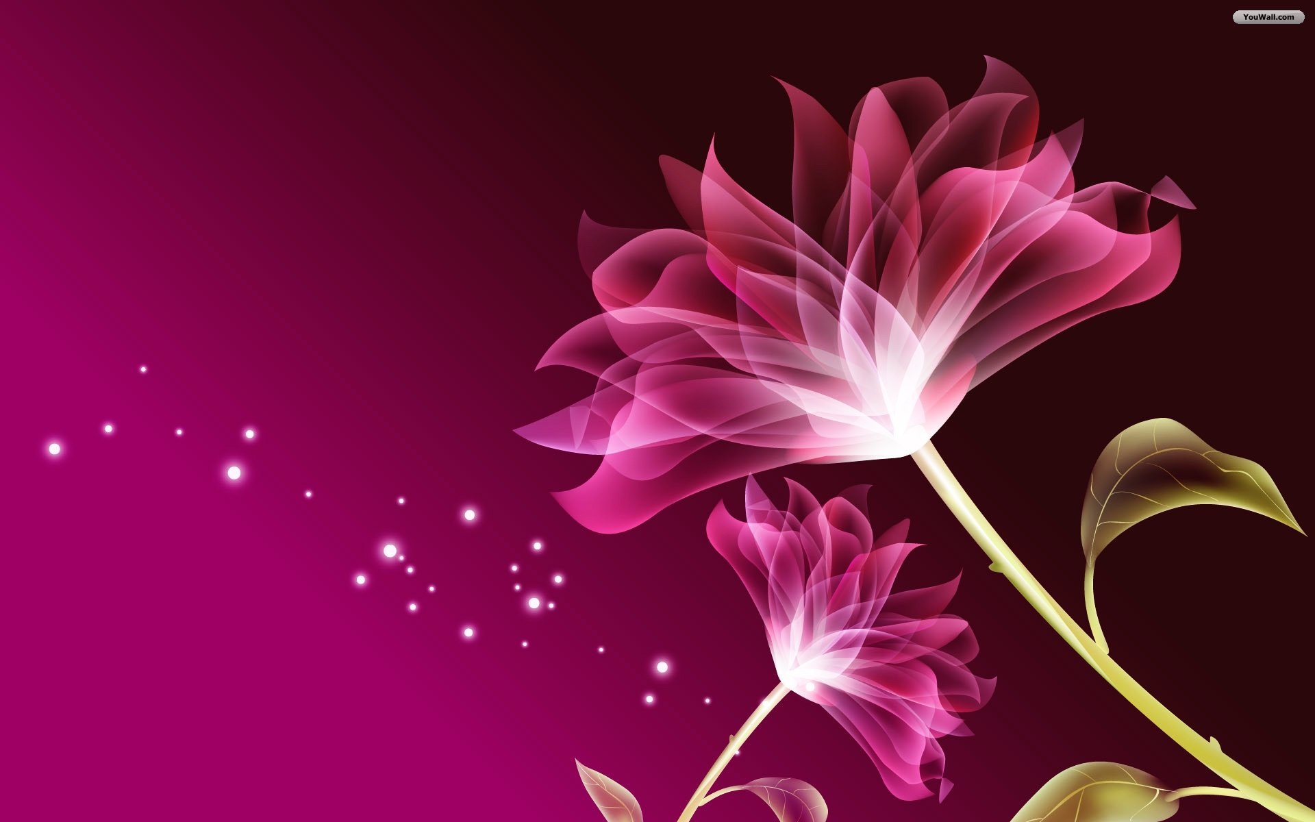 Free Wallpaper Backgrounds Flowers