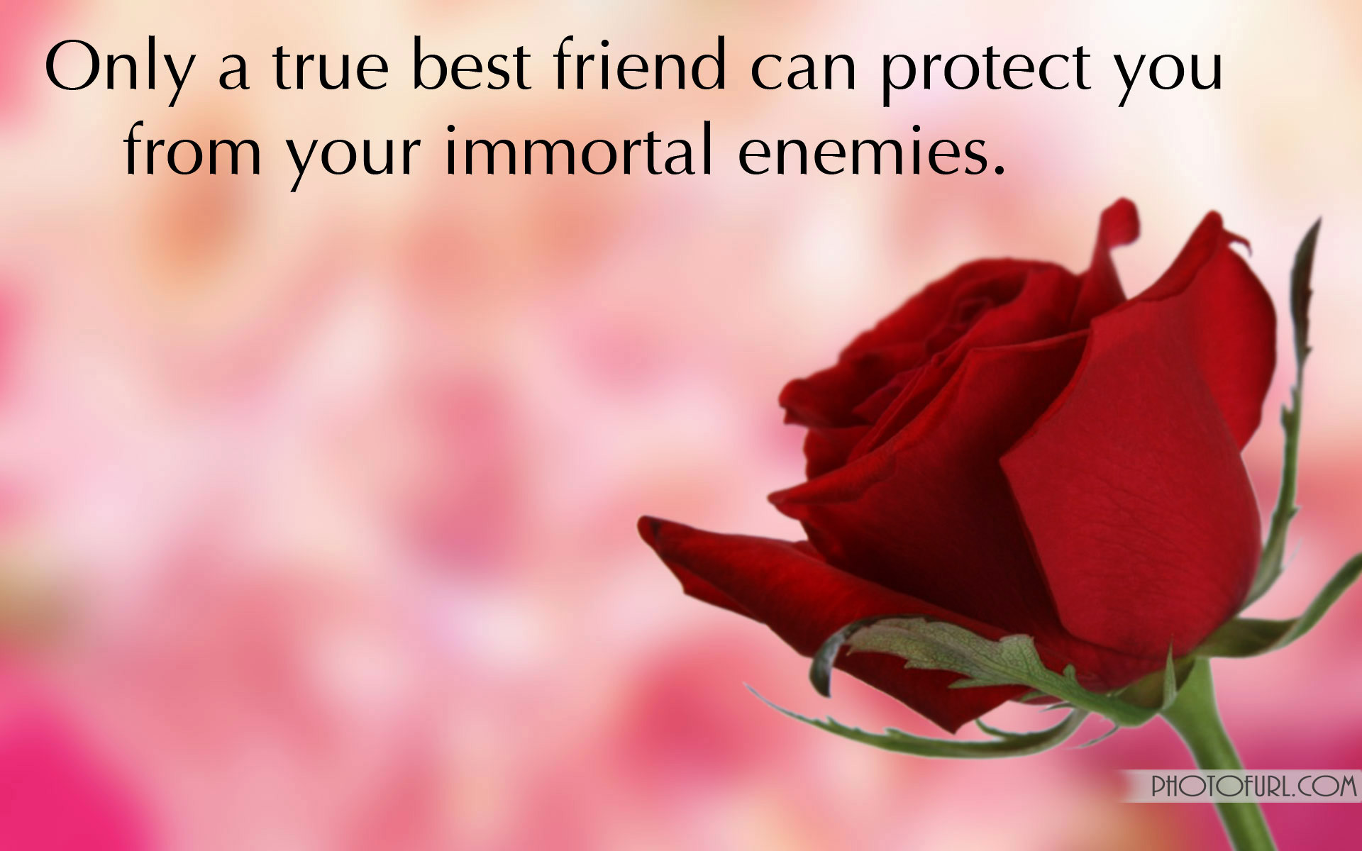 Friendship Wallpapers With Quotes Free Download