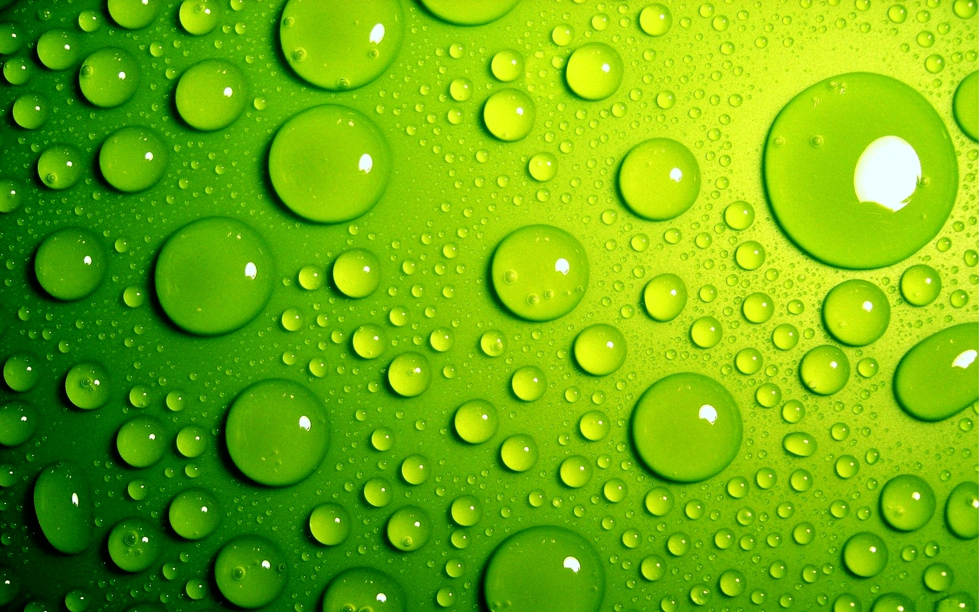 Full HD Green Wallpapers
