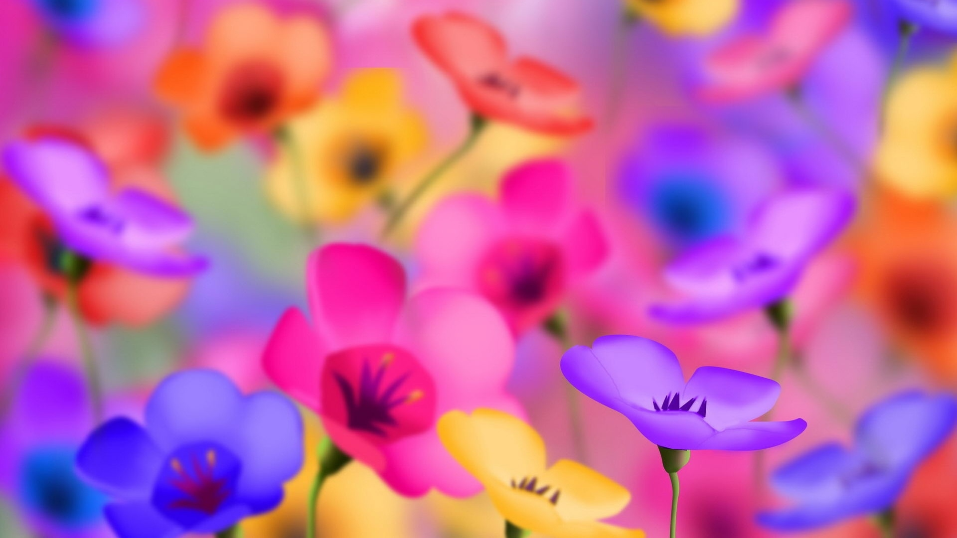 Full HD Wallpapers 1080p Flowers