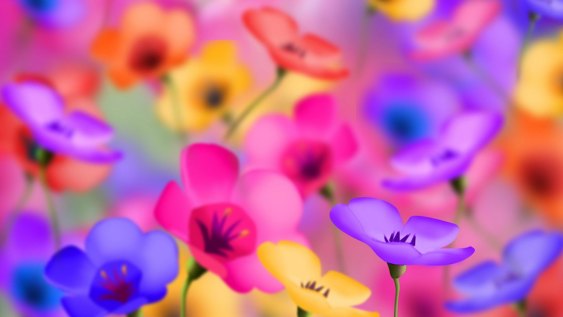 Full HD Wallpapers Of Flowers