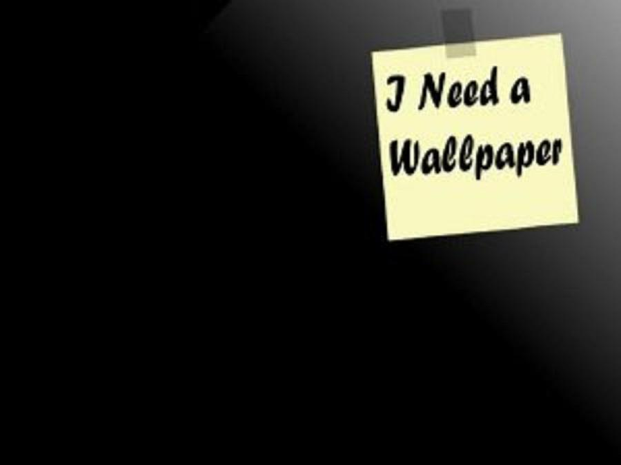 Funniest Wallpapers Ever