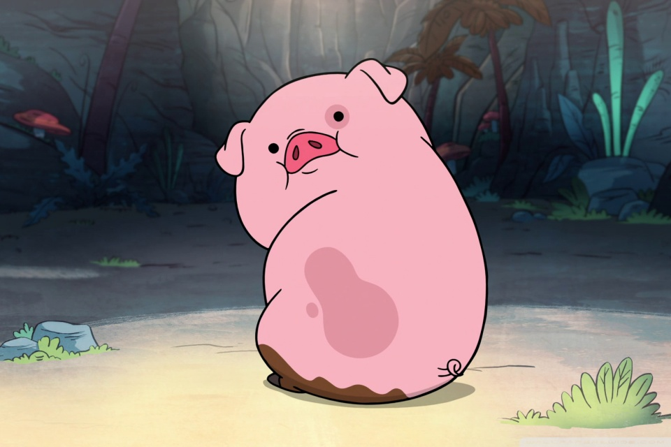 Funny Pig Wallpaper
