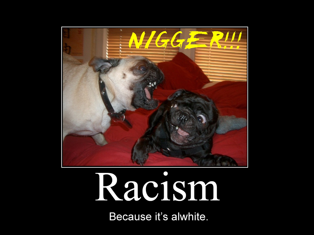 download funny racist wallpapers gallery