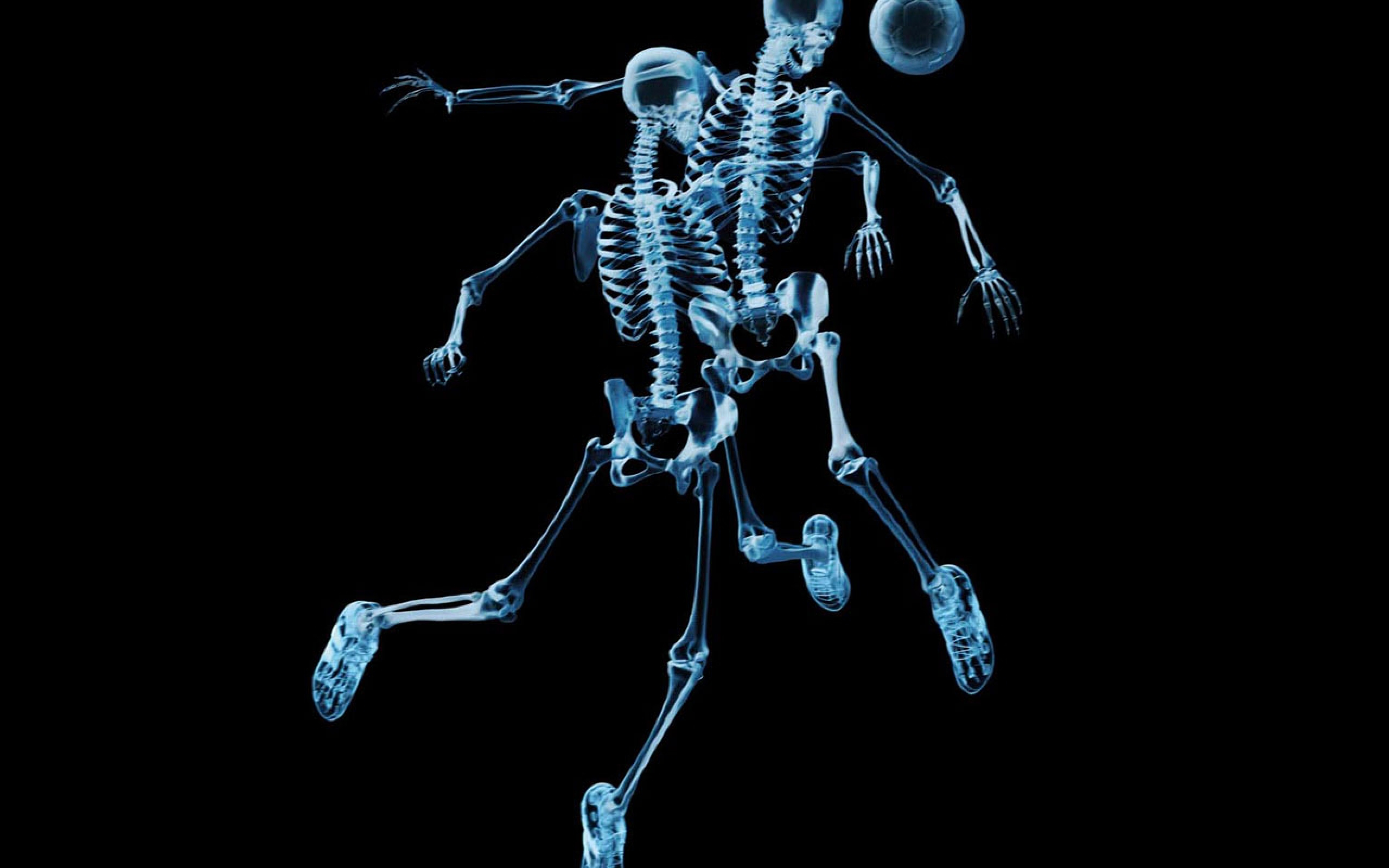 Funny Skeleton Wallpaper