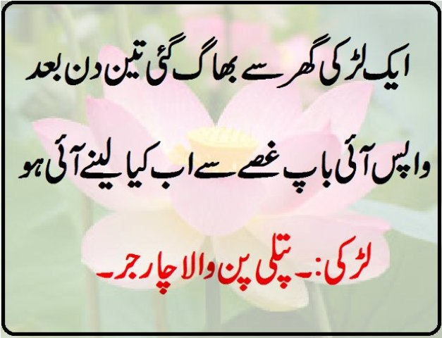 Funny Wallpaper In Urdu