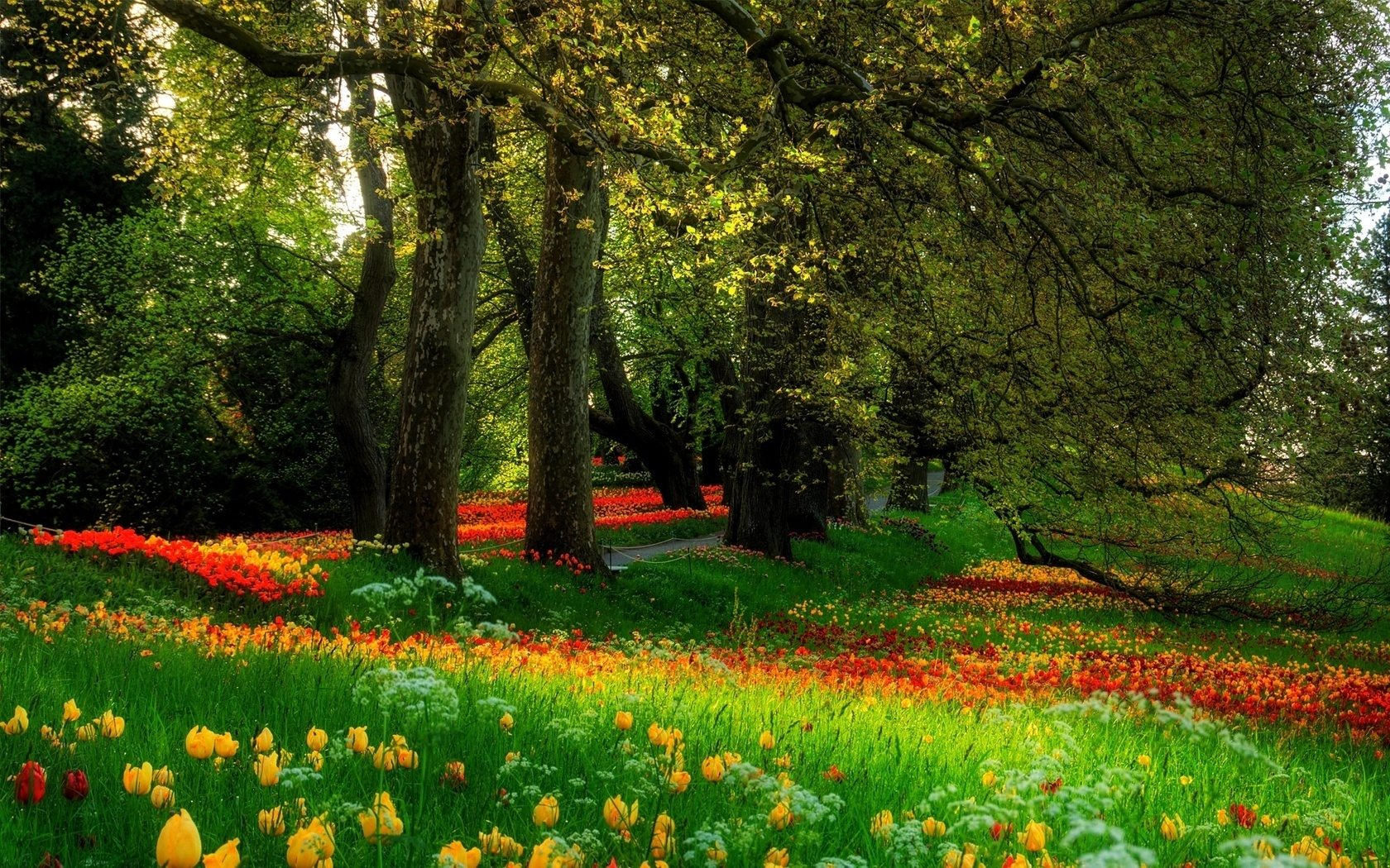 Garden Scenery Wallpapers
