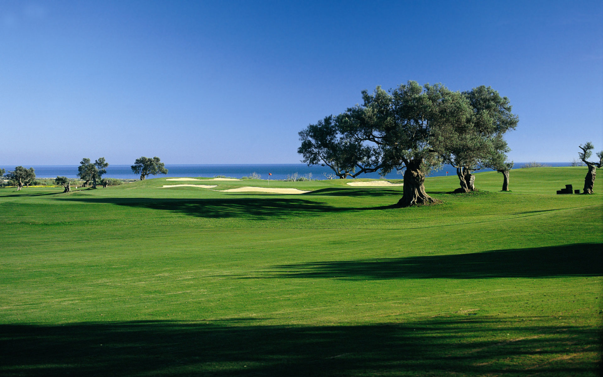 Download Golf Course Background Wallpaper Gallery