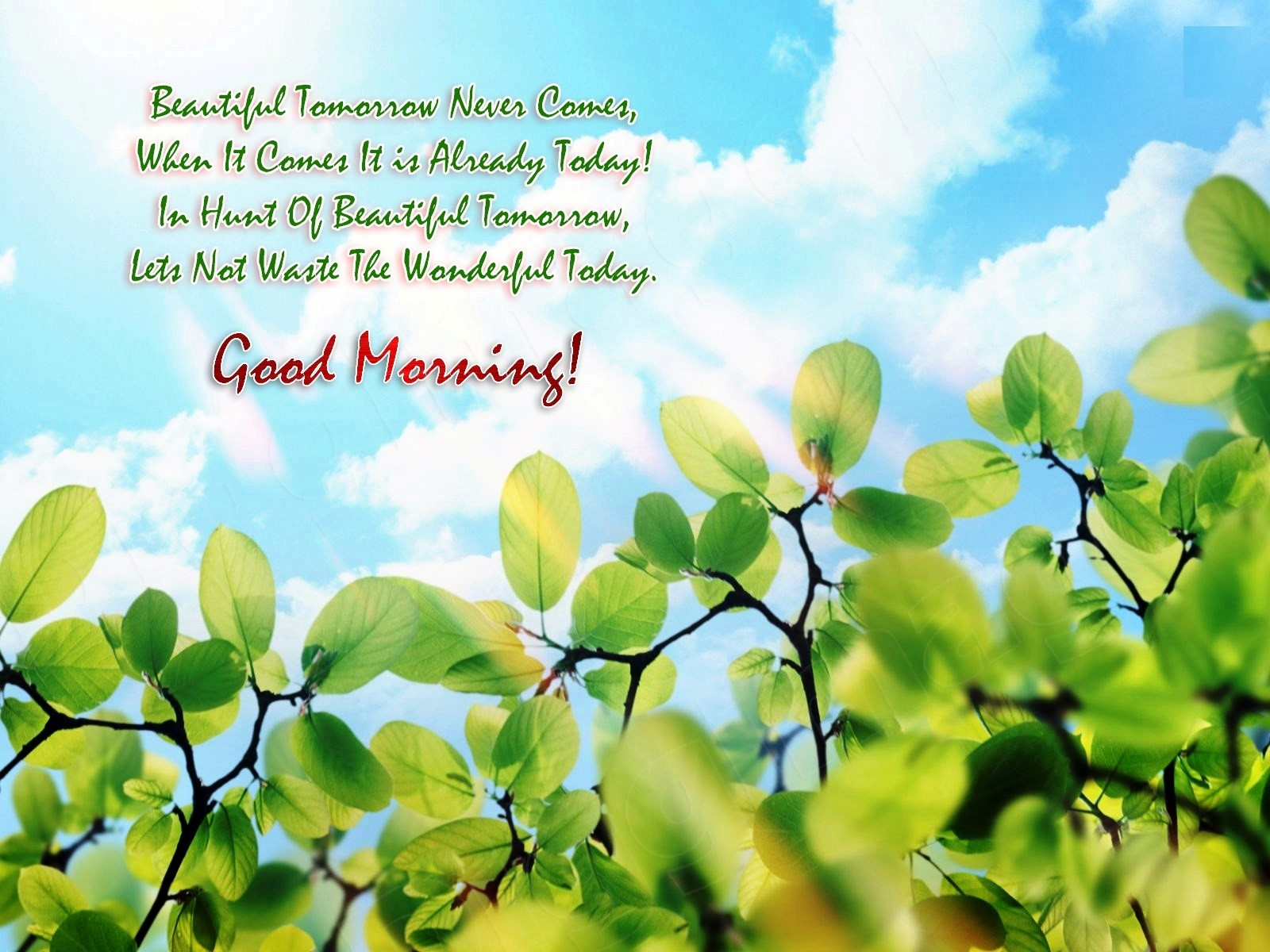 Good Day Wallpapers Quotes