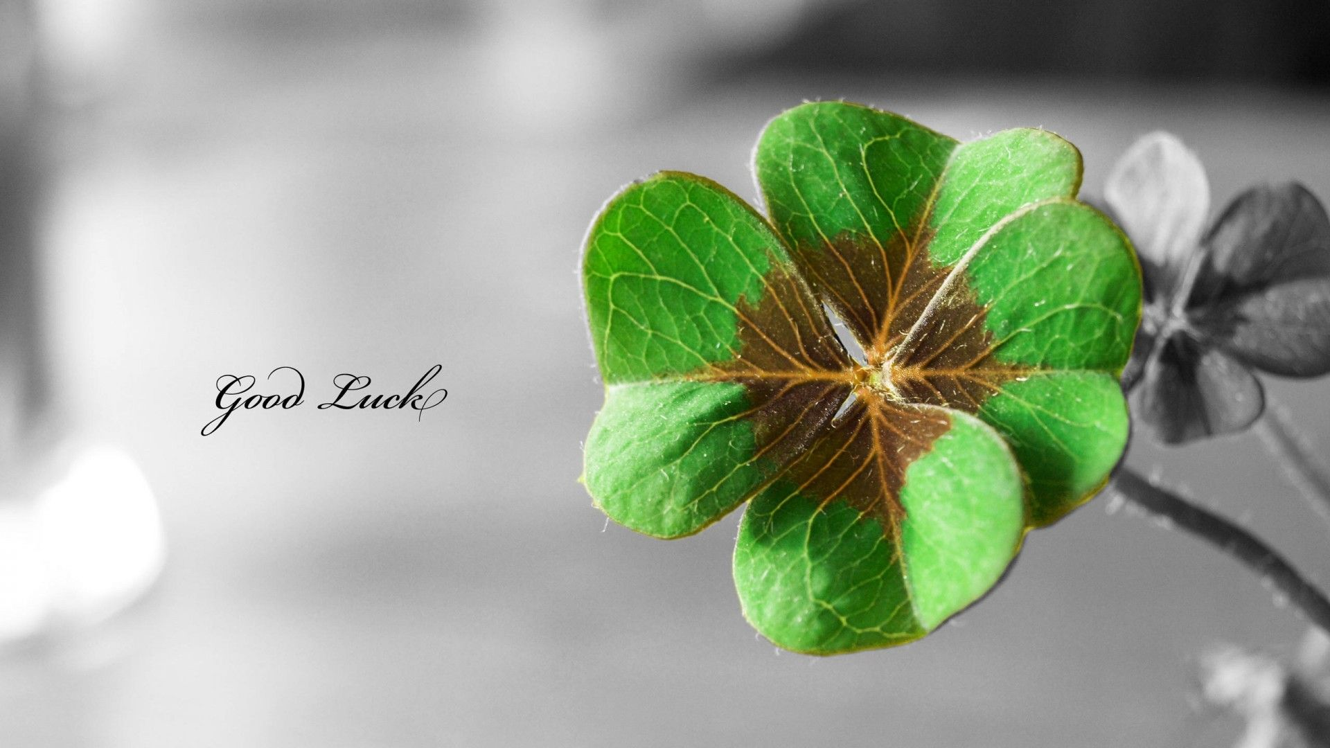 Good Luck Wallpaper HD