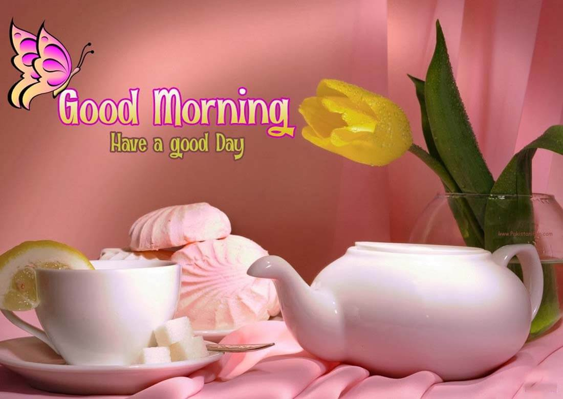 Good Mornig Wallpaper