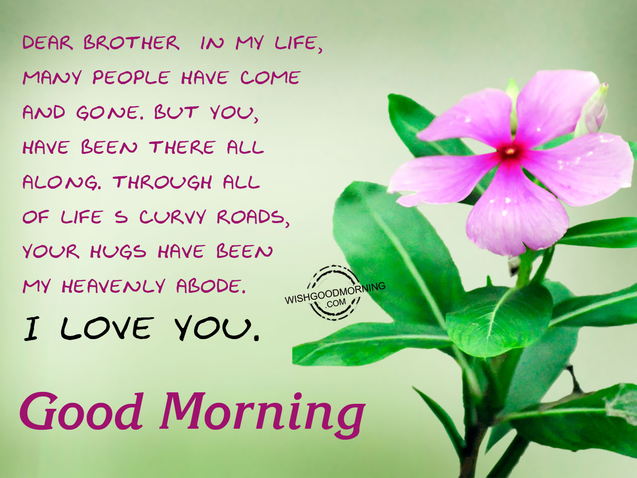 Wallpaper download morning - Download Good Morning Brother Wallpaper Gallery