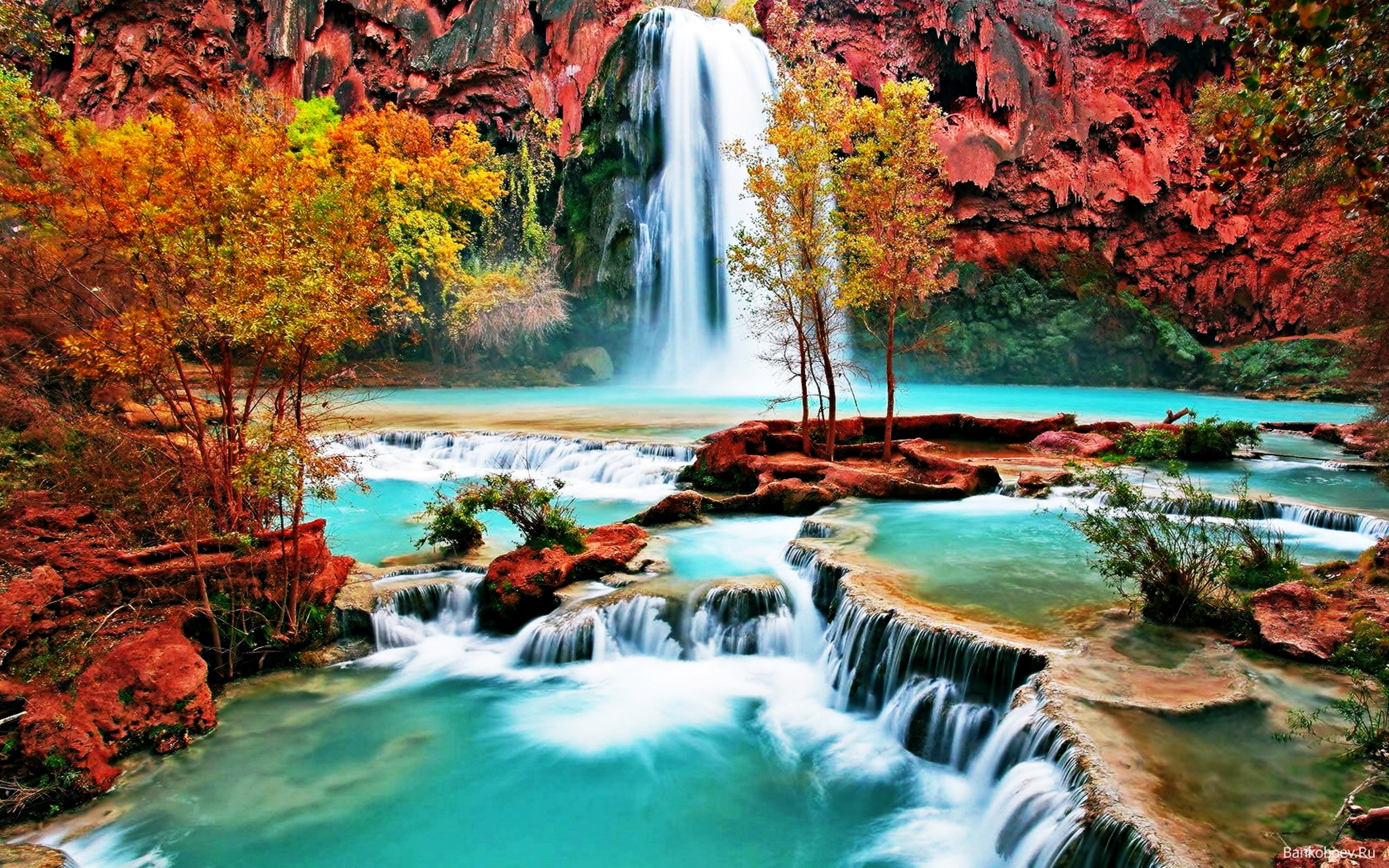 Gorgeous Nature Wallpapers