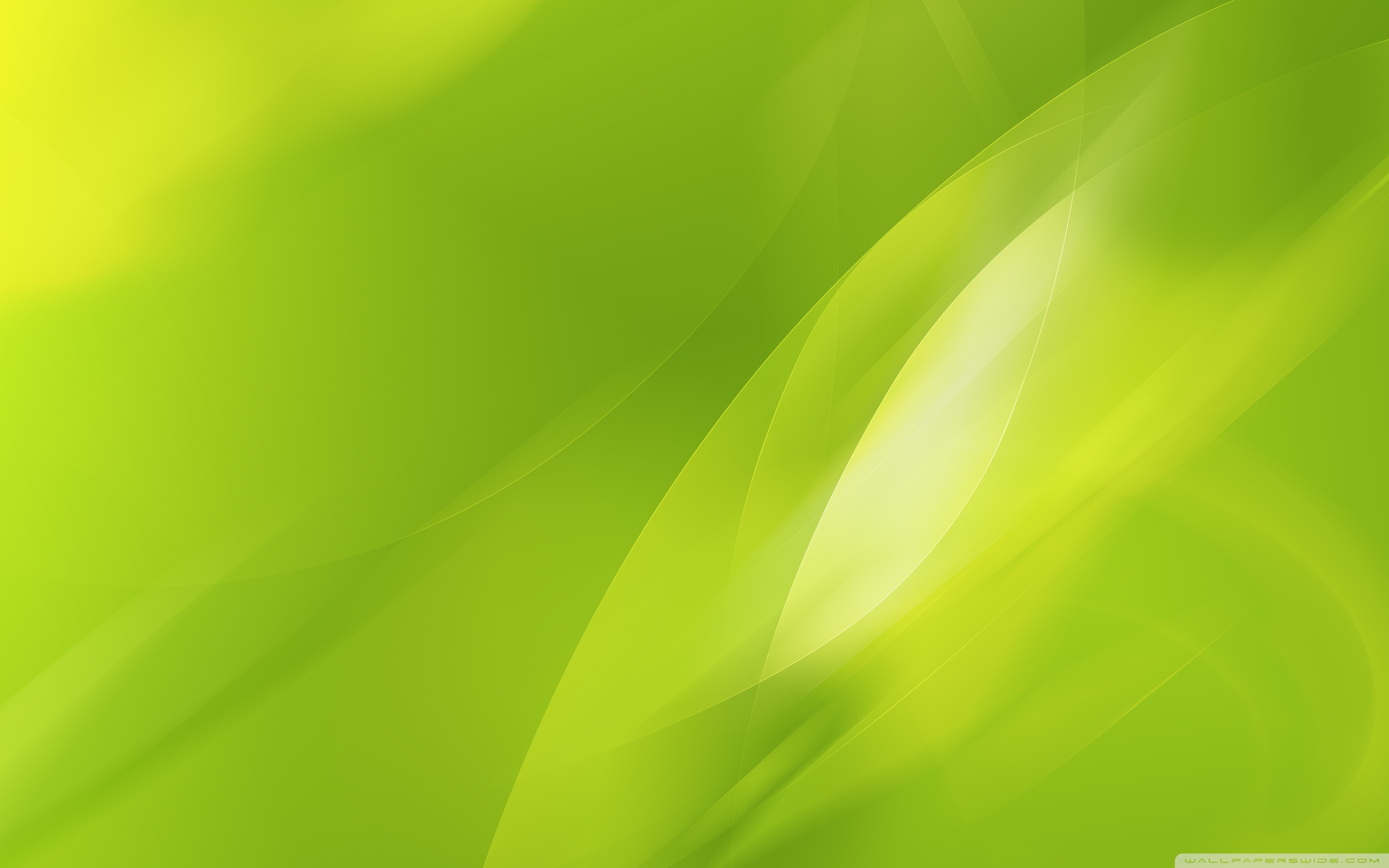 Green Graphic Wallpaper