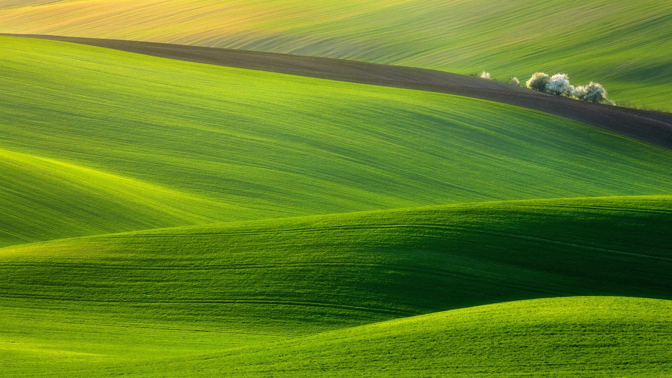 Green Hills HD Wallpapers