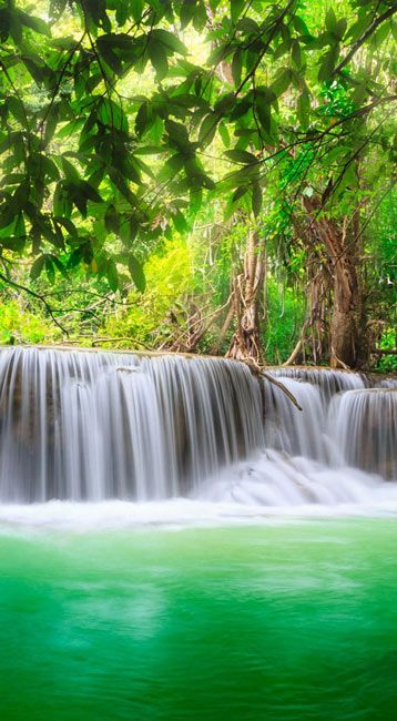 Download green nature wallpaper download gallery - Background pictures of nature for desktop ...