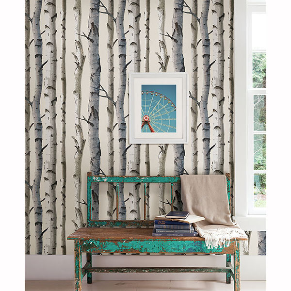 Grey Birch Tree Wallpaper
