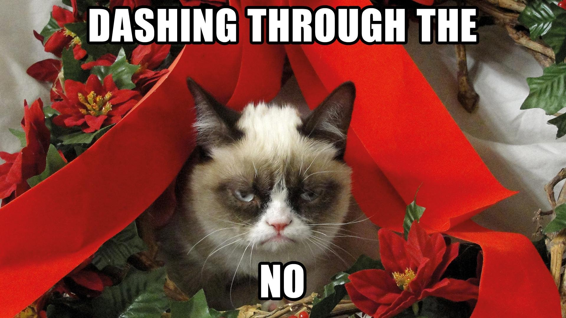 Grumpy Cat Christmas Wallpaper