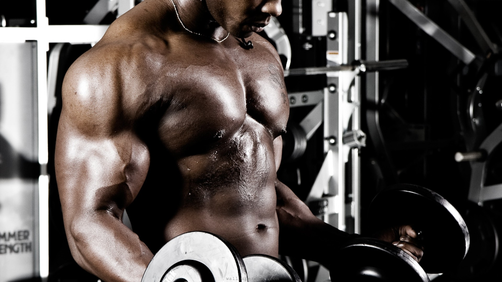 Gym Wallpapers Download