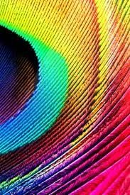 HD Colorful Wallpapers For Mobile