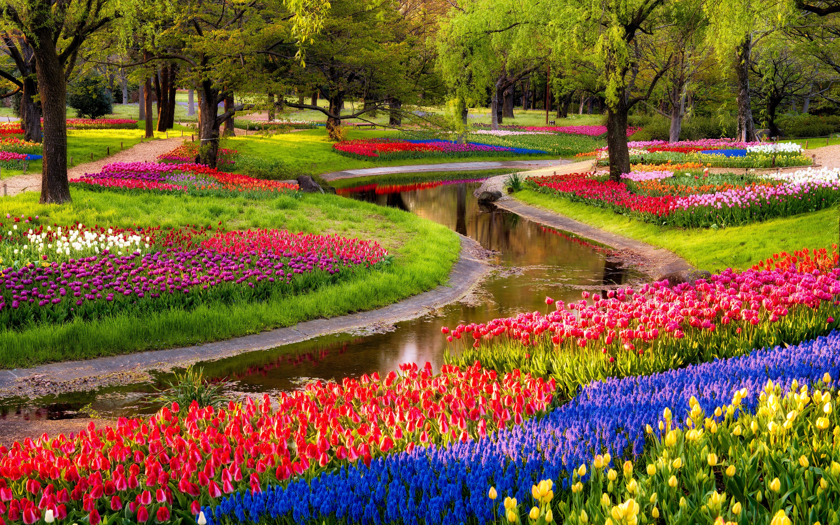 HD Flower Garden Wallpaper
