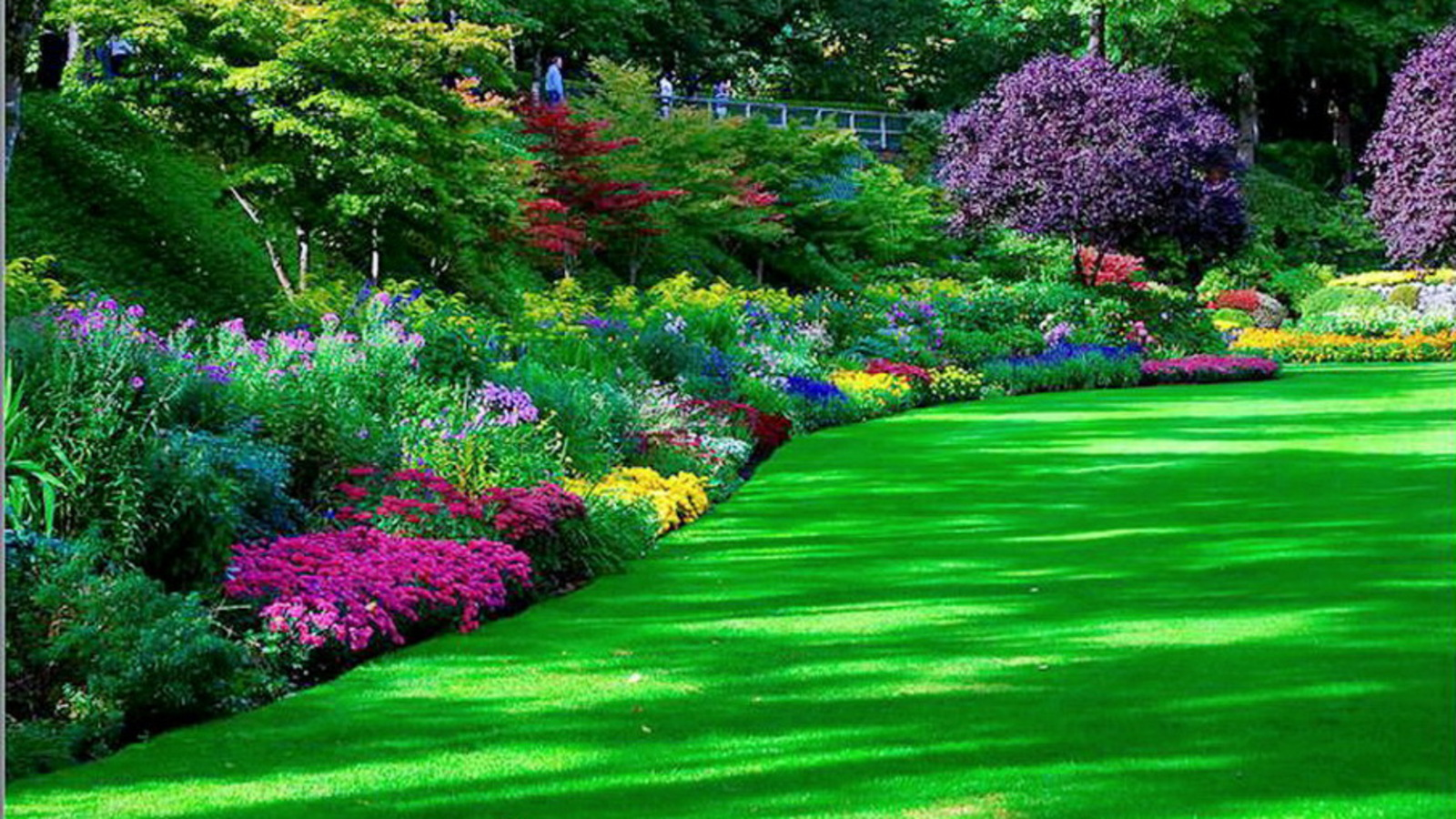 HD Garden Wallpaper Download
