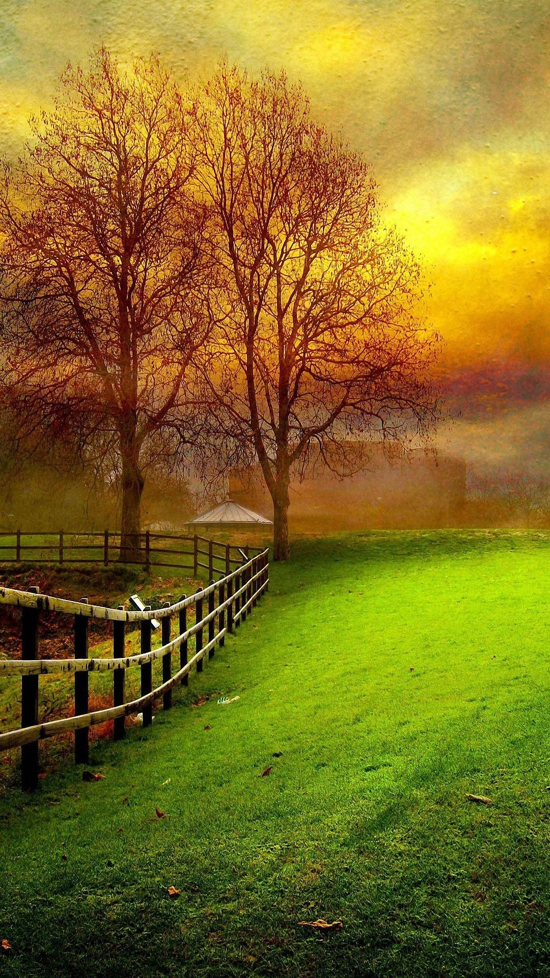 Download Hd Nature Wallpaper For Android Phone Gallery