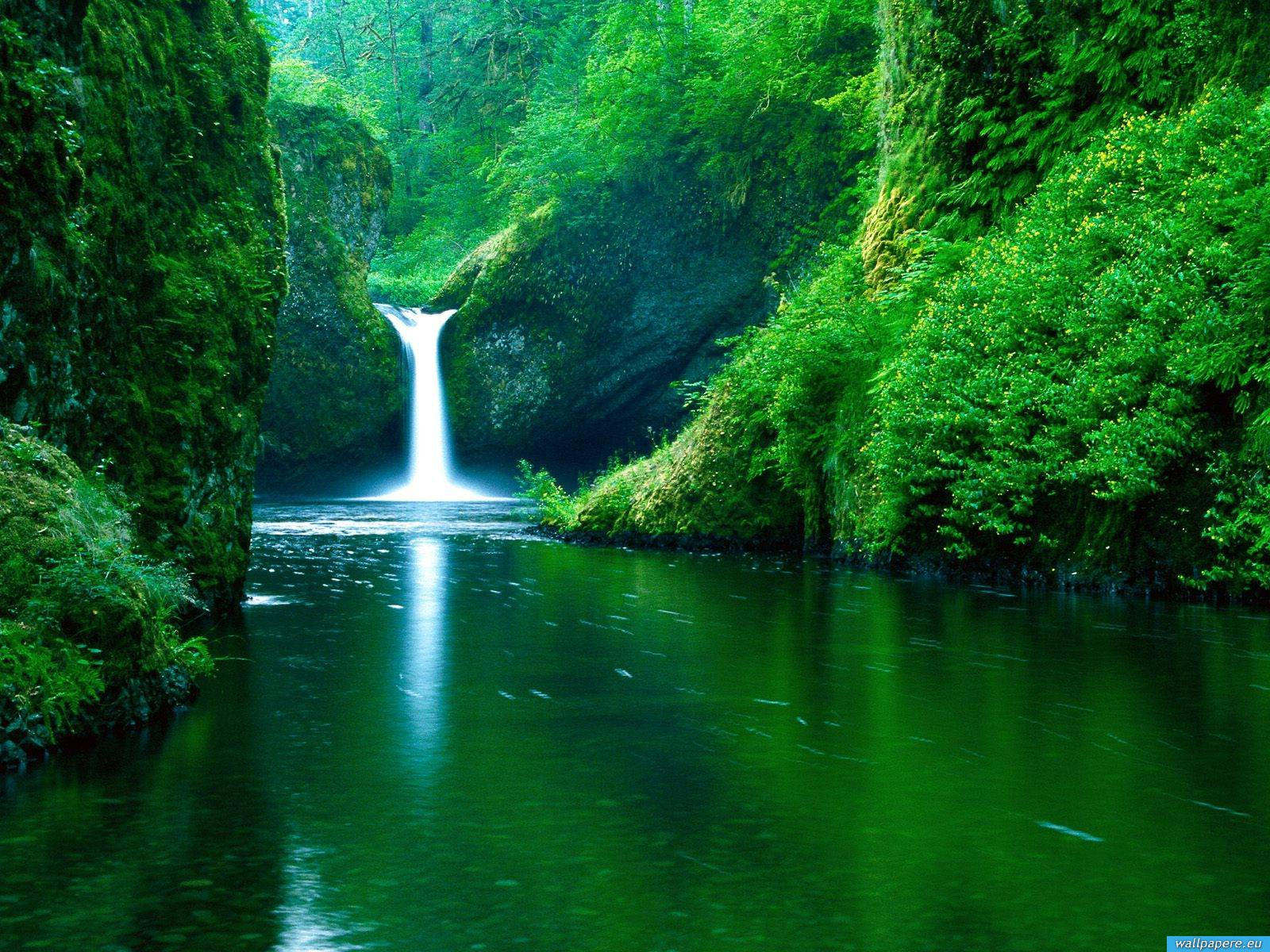HD Natures Wallpapers