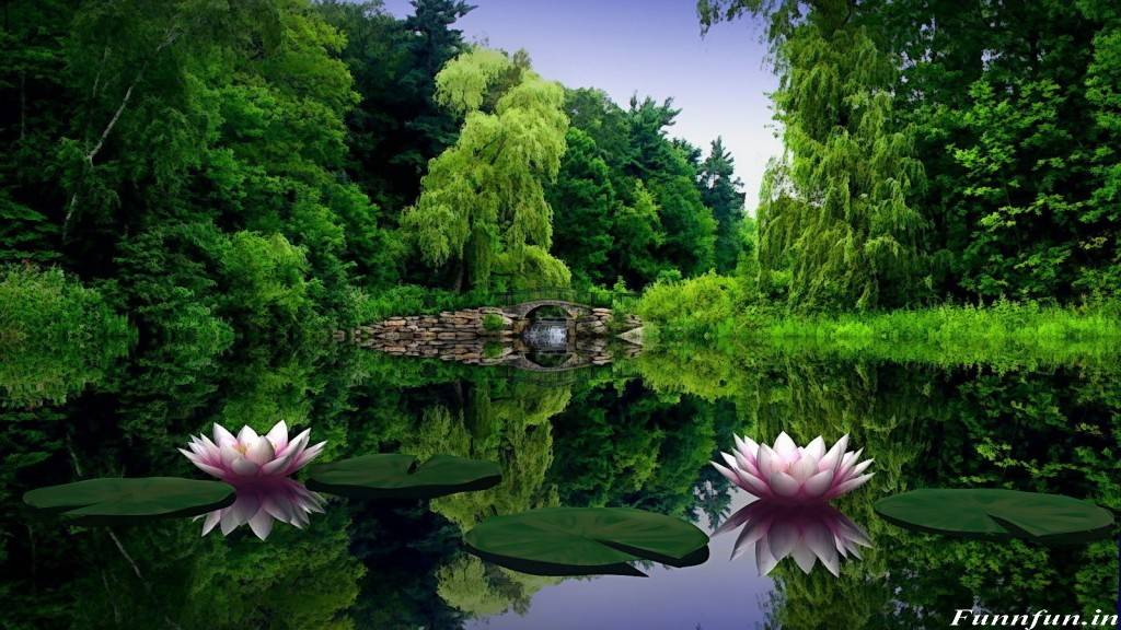 HD Wallpaper Of Nature Download
