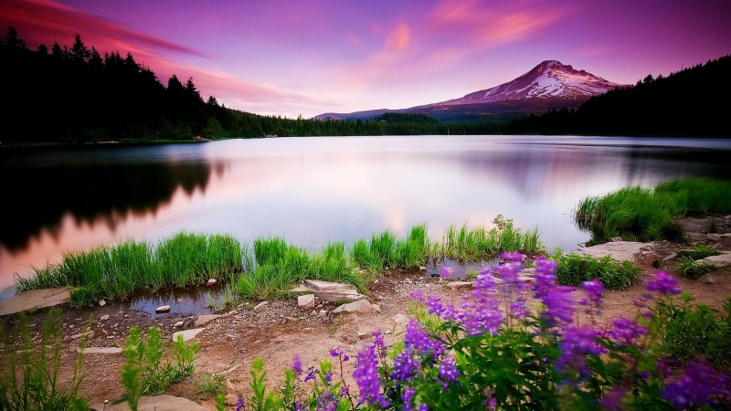 HD Wallpapers 1080p Widescreen Nature