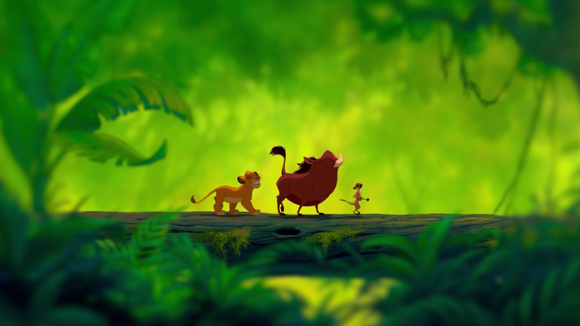 HD Wallpapers Lion King