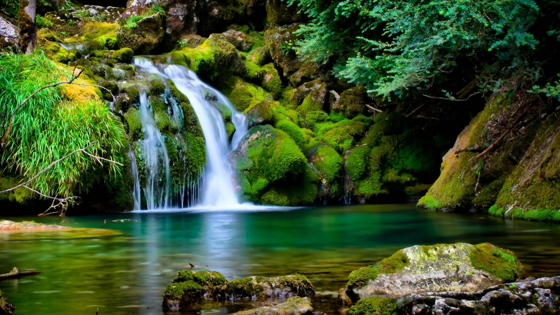 HD Wallpapers Nature Free Download