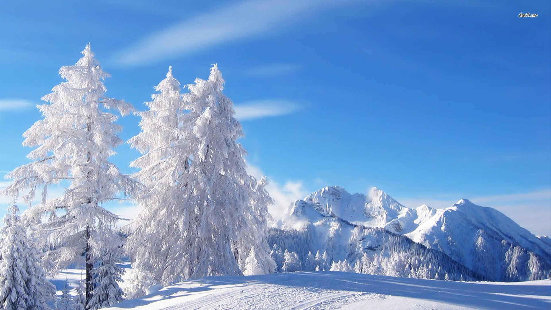HD Wallpapers Nature Winter
