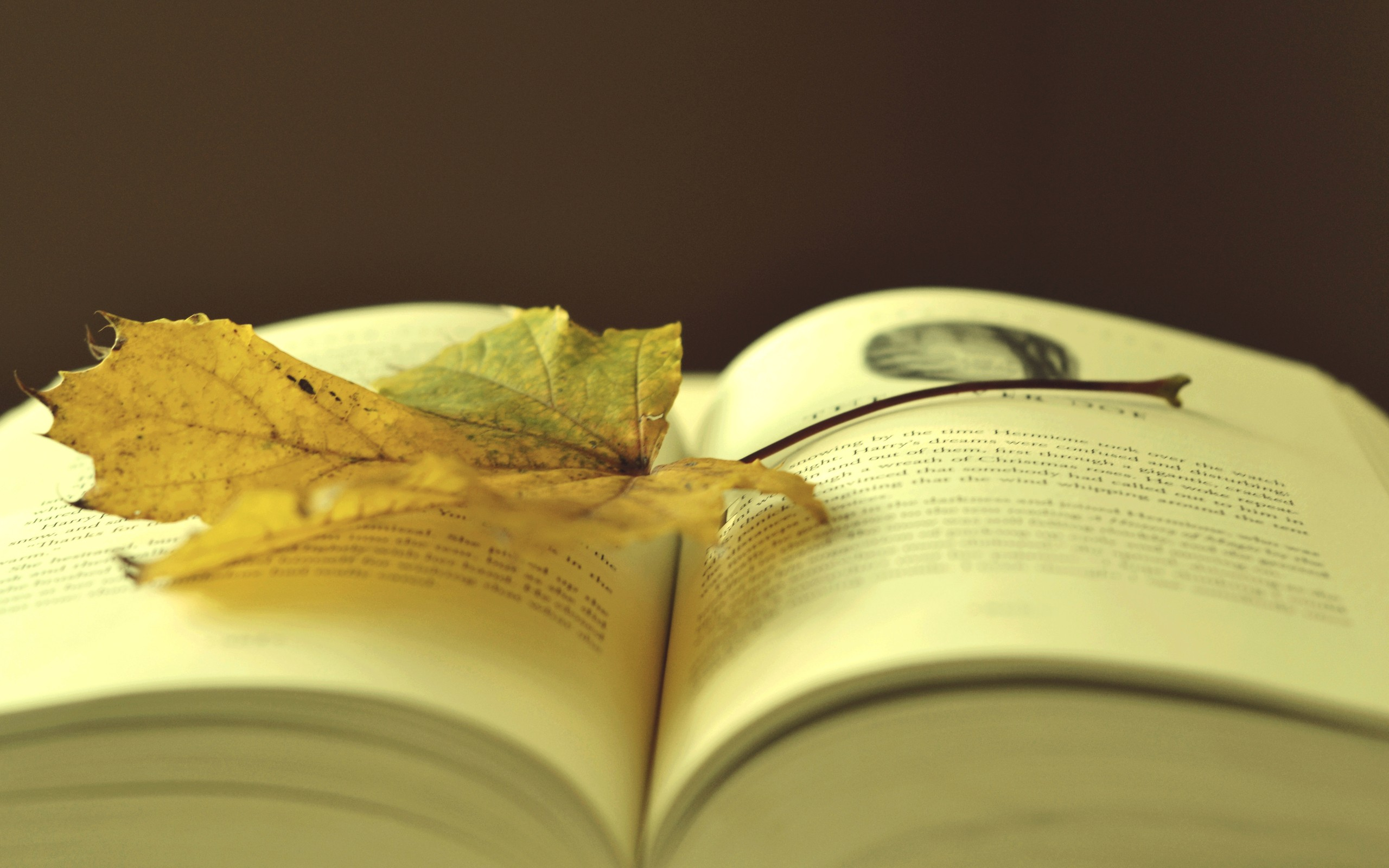 HD Wallpapers Of Books
