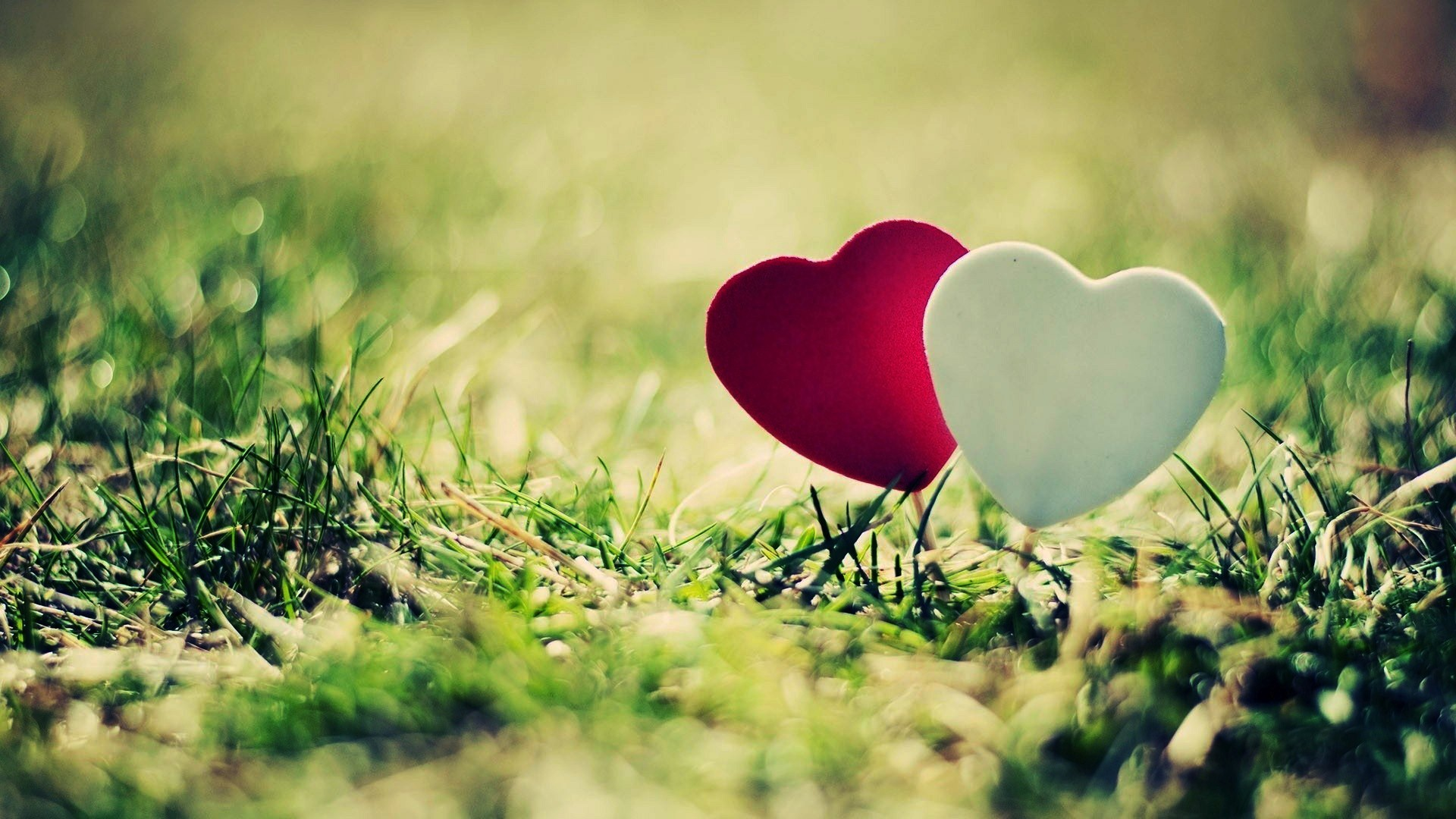 HD Wallpapers On Love