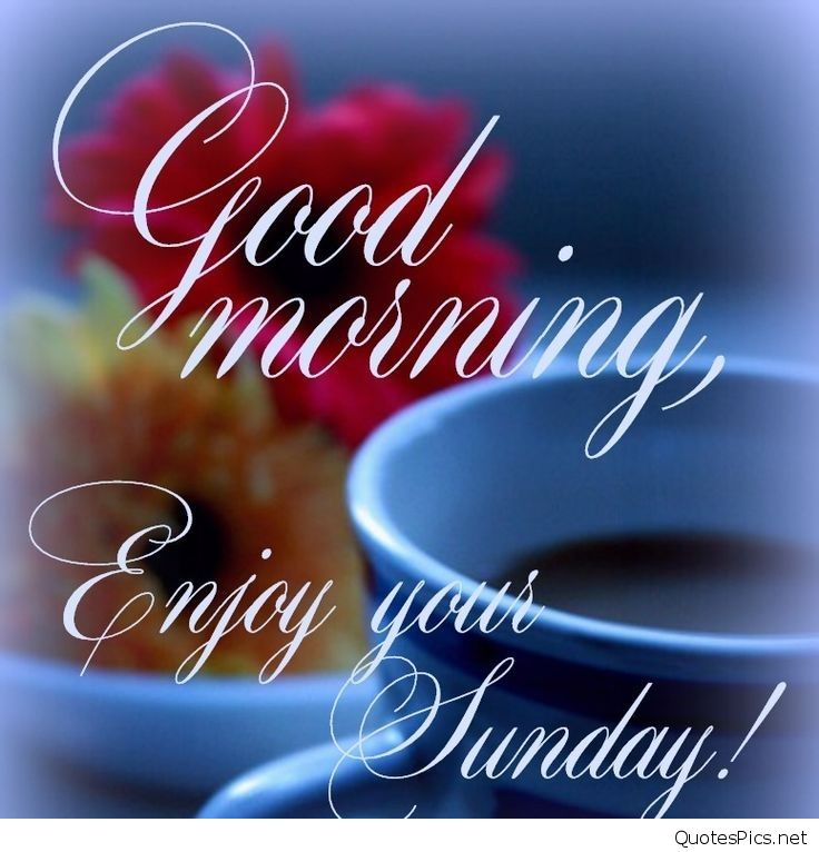 Good Morning Sunday Wallpaper Download : Download happy sunday morning wallpaper gallery