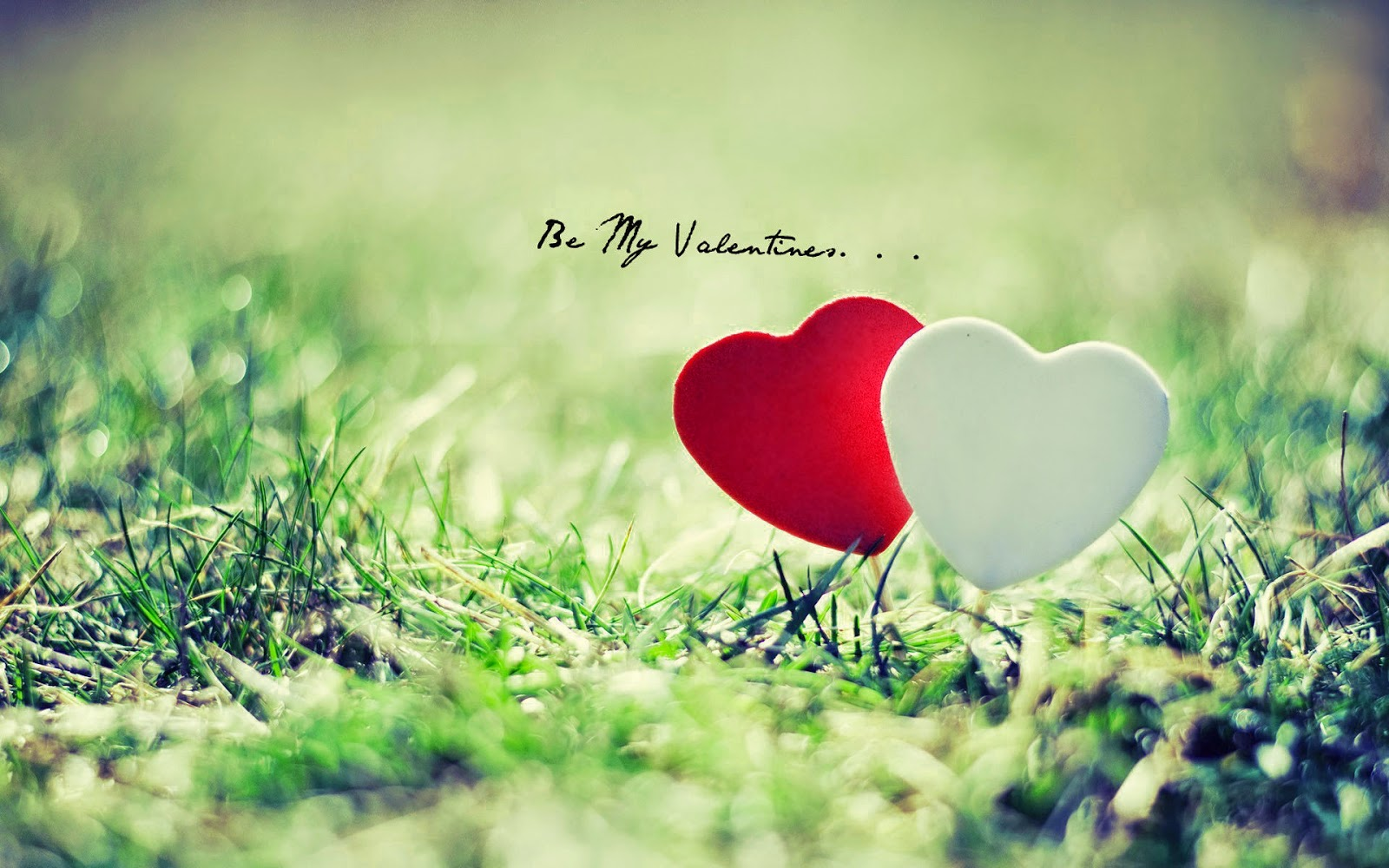 Happy Valentines Day 2014 Wallpapers