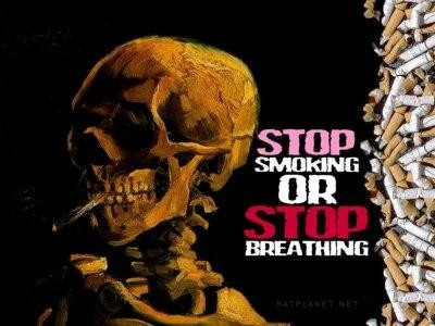Download Harmful Effects Of Smoking Wallpapers Gallery