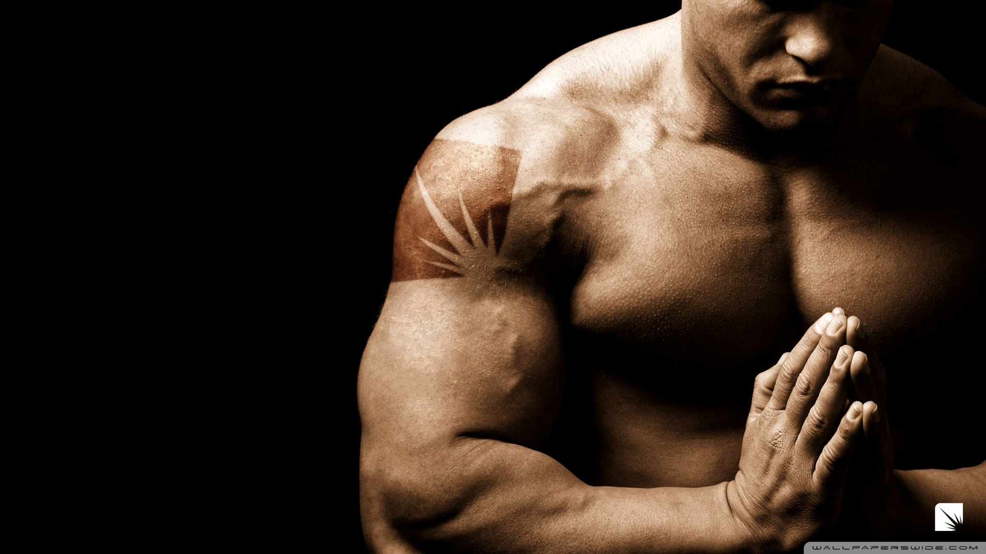 High Resolution Bodybuilding Wallpapers