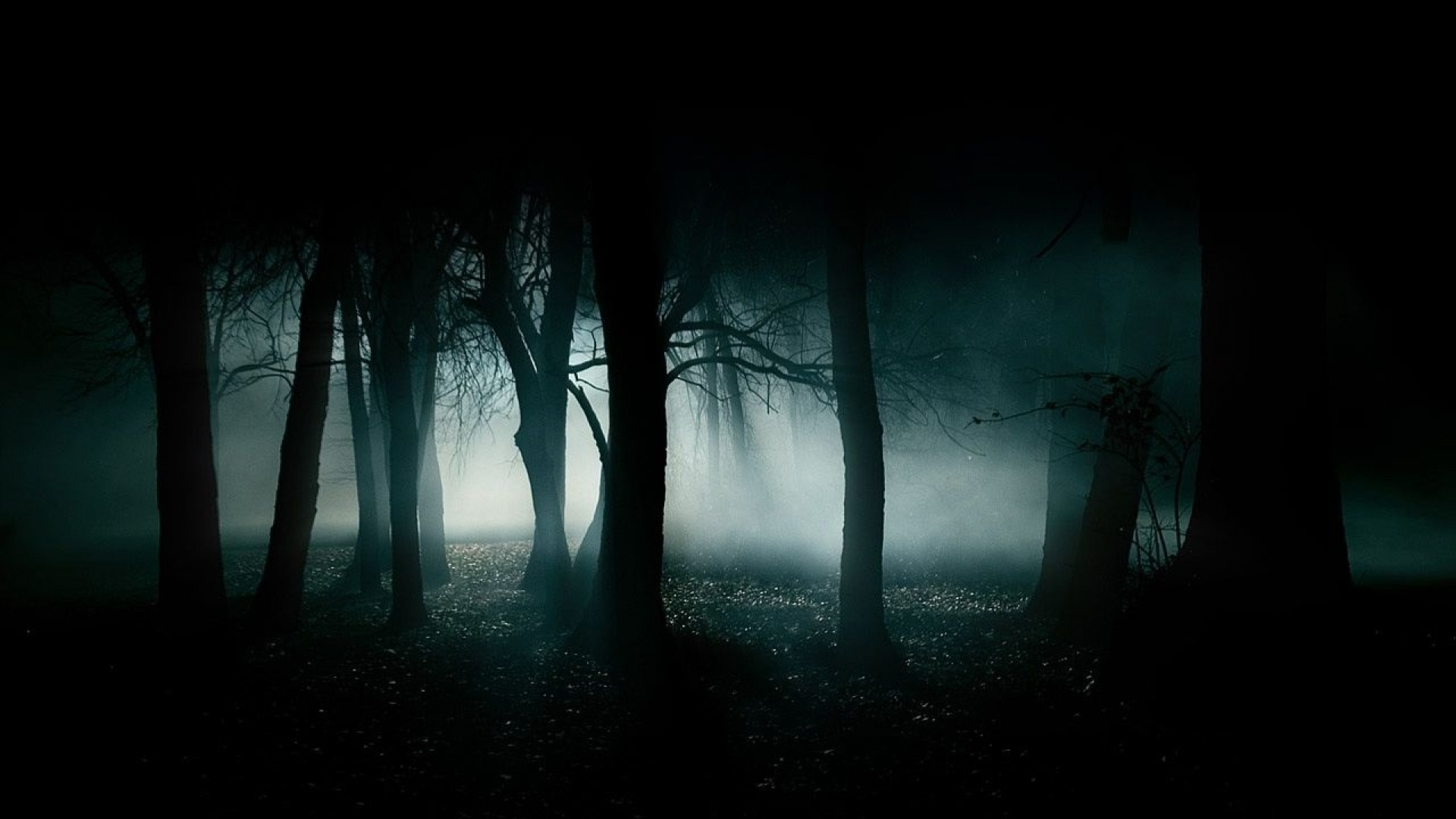 Horror Night Wallpaper