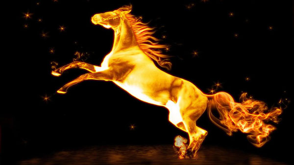 Horse Fire Wallpaper