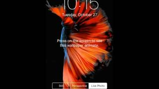 How To Get Live Wallpapers On Iphone 5